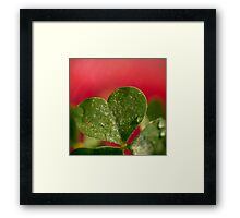 A Growing Love.  Framed Print