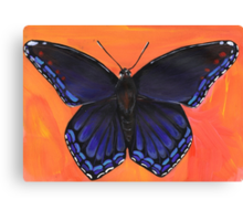 Red Spotted Purple Butterfly Canvas Print