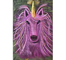Unicorn.. Photographic Print