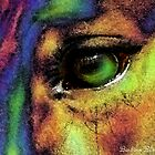 Colorful Eye by Barbara  Black