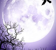 Nocturnal by dimarie