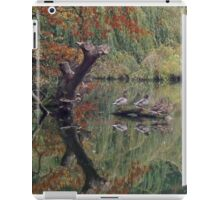 A Couple of Couples (Ducks at Witley)  iPad Case/Skin