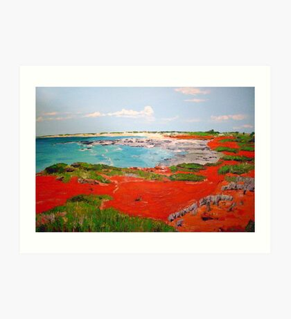 Broome View  Art Print