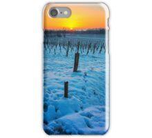 Sunset on snowy vineyard iPhone Case/Skin