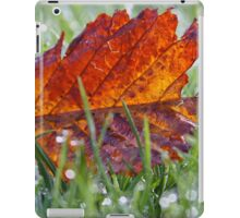 Fallen cherry tree leaf iPad Case/Skin