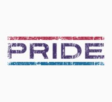 Bisexual Pride Banner by Ashton Bancroft