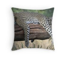 Lazy Leopard Throw Pillow