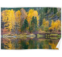 Wenatchee Reflections Poster