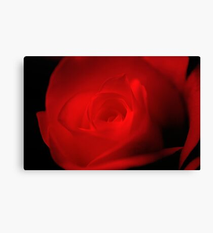 A touch of velvet  Canvas Print