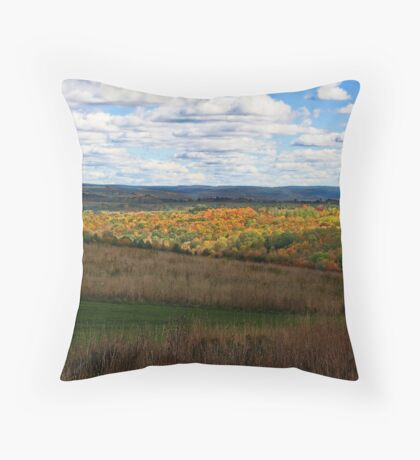 Country Time Fall Throw Pillow