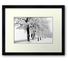 When the snow falls Framed Print