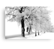 When the snow falls Canvas Print