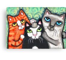 Siamese Tabby and Tuxedo Cats Posing Art Print Canvas Print