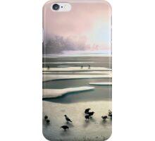 On Thin Ice iPhone Case/Skin