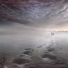 Gone by Igor Zenin
