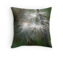 Seed Fountain Throw Pillow