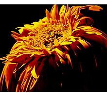 Fading of the flame Photographic Print
