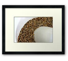 Fennel's Seed Framed Print