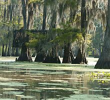 Louisiana Swamp Duck Blind by KSkinner