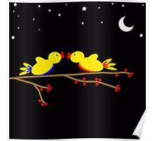 Valentine's Day Birds Hearts Night Poster
