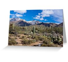 Sabino Canyon Tucson Arizona USA Greeting Card