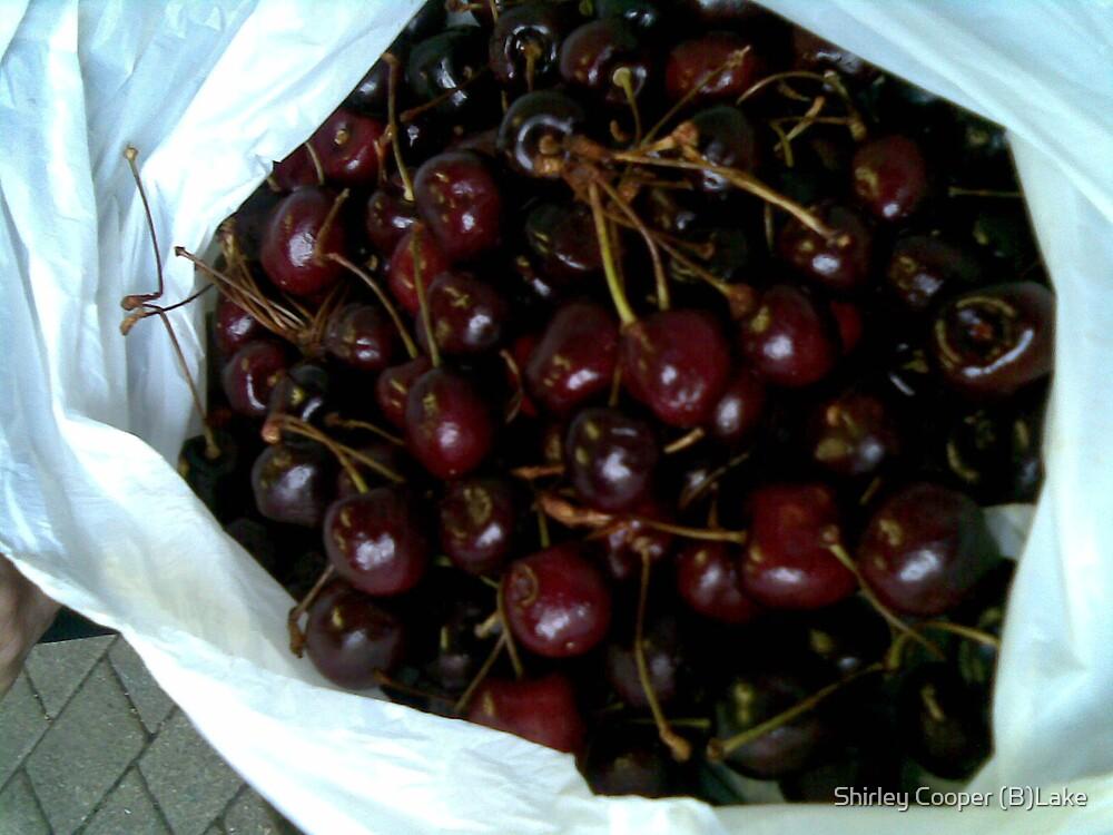 Cherries by Shirley Cooper (B)Lake