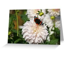 Automn morning Greeting Card