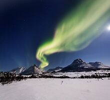 White plains under the Northern Lights by Frank Olsen