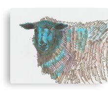 Black Sheep Illustration Canvas Print