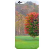 Trees Changing iPhone Case/Skin