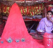 Lord Shiva festival Haridwar by DeborahDinah