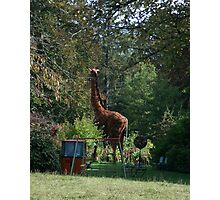 """a giraffe and a cable car in """"my"""" garden Photographic Print"""