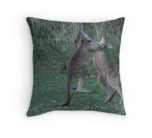 kangaroo boxing Throw Pillow