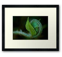 Untitled.00135 Framed Print