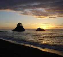 CAPE ALAVA, WASHINGTON  by MsLiz