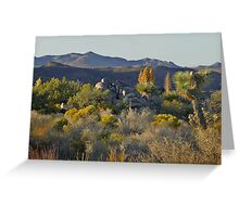 Joshua Tree National Park - A Landscape to Die For Greeting Card