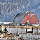 Winter in Wisconsin by wiscbackroadz