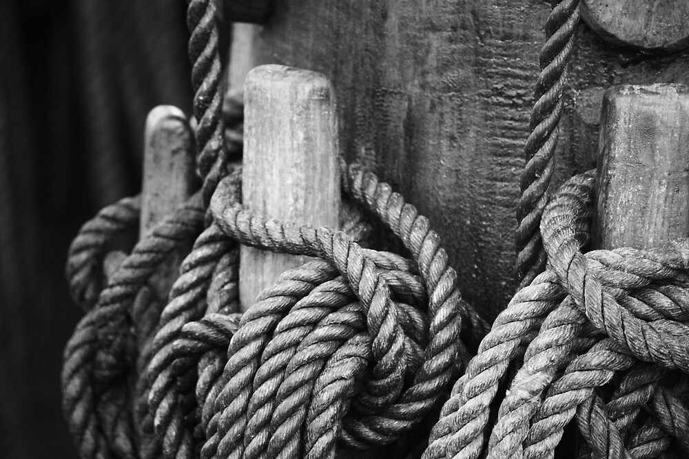rate of knots by Steve Scully
