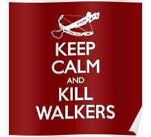 KEEP CALM AND KILL WALKERS Poster
