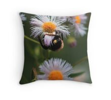 BEE ON ROBINS PLANTAIN Throw Pillow