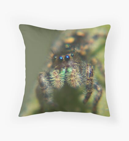 For Anibal, WHat? You dont like bugs? Throw Pillow