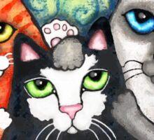 Siamese Tabby and Tuxedo Cats Posing T-Shirt  Sticker