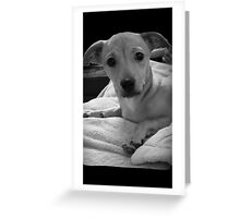 PUPPY SWEETNESS♡ Greeting Card