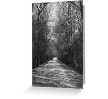 Palmetto Trail In Florence, SC Greeting Card