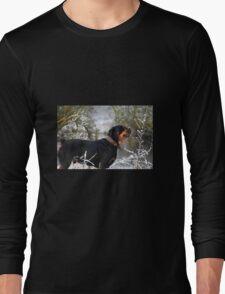 A frosty reception Long Sleeve T-Shirt