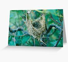 Rose Bush Nest Greeting Card