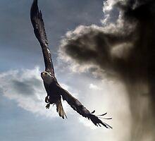 """Sky Warrior"" by Val  Brackenridge"