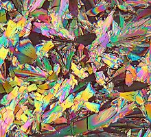 Healthy crystals: Malic acid under the microscope by Zosimus