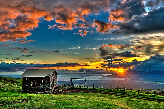 The Salt Barn by Randy Jay Braun
