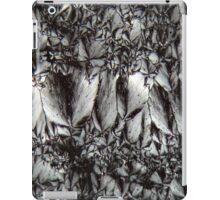 Cholesterol iPad Case/Skin